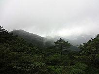 黄山自然风景摄影素材