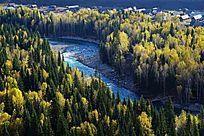 森林里的河流