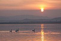夕阳下的天鹅湖风光