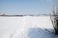 雪后的脚印