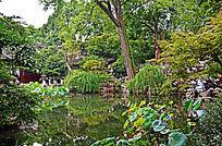 苏州园林景观