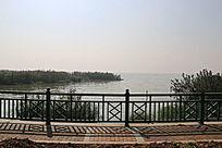 竺山湖风光