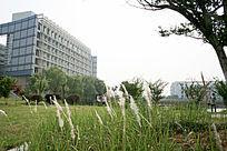 大学校园建筑