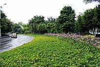 公路边花园