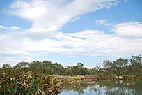 西溪湿地湖泊