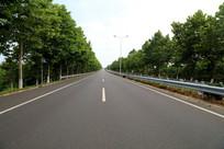 绿化好的公路