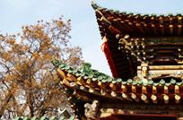 斗拱木结构