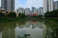 湖边高楼建筑风光