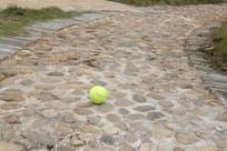 停留在林间小道上的网球