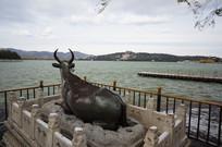 颐和园铜牛与佛香阁