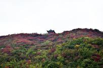 彩色山顶上的古庙图片