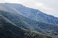起伏的山丘