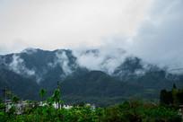 云雾缭绕的南屏后山