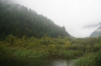 绿植覆盖的山峰