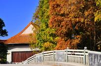 古典建筑秋色风景图片