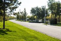 干净整洁的园林公路
