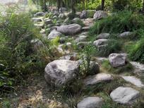 公园中的石头小路