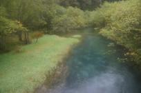 灌木丛中的湖水