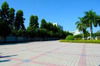 美丽的广场