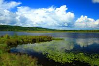 蓝天白云下的杜鹃湖
