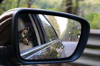 汽车反光镜