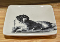 宠物绘画盘子