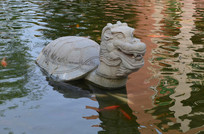 金鱼池里的乌龟雕塑