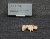 巫山龙骨坡遗址出土更新大灵猫齿骨