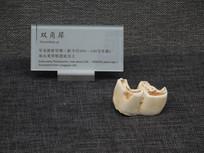 巫山庙宇镇龙骨坡遗址 出土双角犀