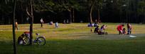 草地上休闲的人们