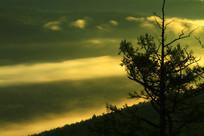 山林云雾朝阳风景