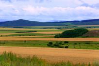 田园牧场秋季风光