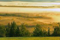 额尔古纳湿地晨雾