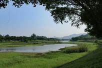草地和湖水