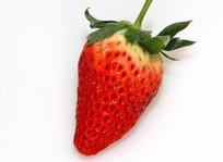 单个红草莓特写