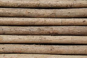 横向松树原木纹背景