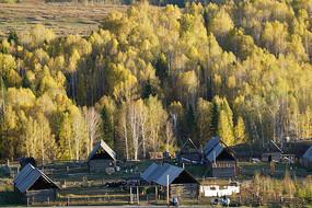 秋天的樹林村莊