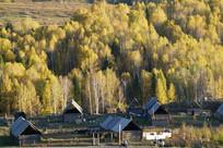 秋天的树林村庄