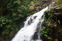 山谷中的瀑布风景图片