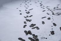 雪地凌乱脚印