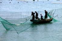 捕捞的喜悦