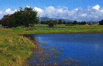 草原湖泊风景