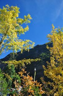 高原的秋天