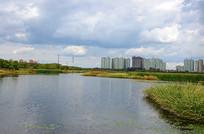 哈尔滨呼兰湿地风景