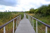 哈尔滨湿地公园小桥