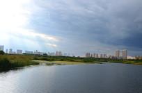 城市湿地风光