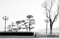 海边公园风景高清图片