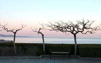 滨海风景高清图片