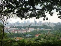 俯拍城市建筑风景图片