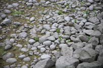 圆溜溜的石头背景图